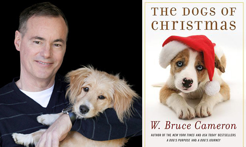Square Books Helps Raise over $1,000 for Oxford Lafayette Humane ...